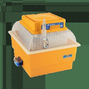 incubateur automatique de poussins